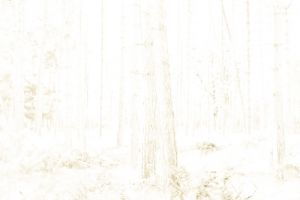 Overexposed-064.jpg