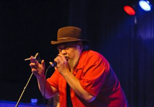 Leerdam Blues 2011-073.jpg