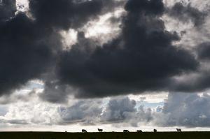 Cornwall-694.jpg